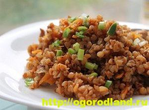 Блюда из гречки. Гречневые каши запеканки, котлеты. Рецепты 4