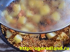 Блюда из гречки. Гречневые каши запеканки, котлеты. Рецепты 12
