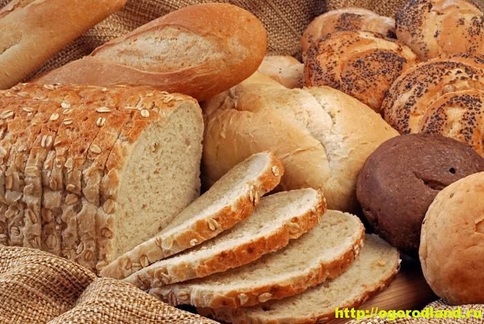 Хлеб – его польза и вред. Какой хлеб полезнее? 1