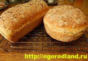 Домашний хлеб. Рецепт выпечки хлеба и его различные варианты 3
