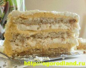 Домашние торты. Шесть рецептов вкусных тортов 6