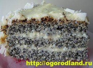 Домашние торты. Шесть рецептов вкусных тортов 8