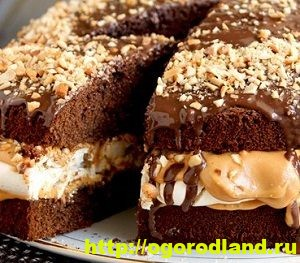 Шоколадные торты своими руками. Пять вкусных рецептов