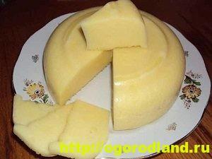 Как приготовить домашний сыр. 12 рецептов сыров по-домашнему 2