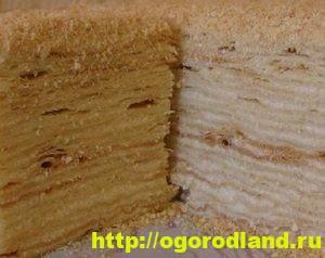 Домашние тортики и десерты без выпечки. 12 вкусных рецептов 7