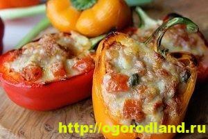 Блюда из кукурузы. Рецепты салатов, горячих блюд, выпечки 8