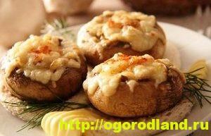 Блюда из кукурузы. Рецепты салатов, горячих блюд, выпечки 11