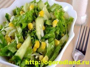 Блюда из кукурузы. Рецепты салатов, горячих блюд, выпечки 10