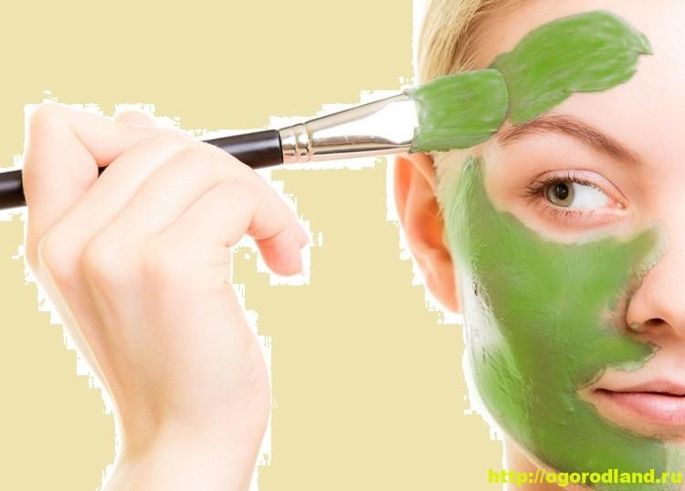 Маски для лица. Что нужно знать о приготовлении масок 3