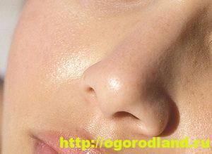 Натуральные маски для нормальной, сухой и жирной кожи лица