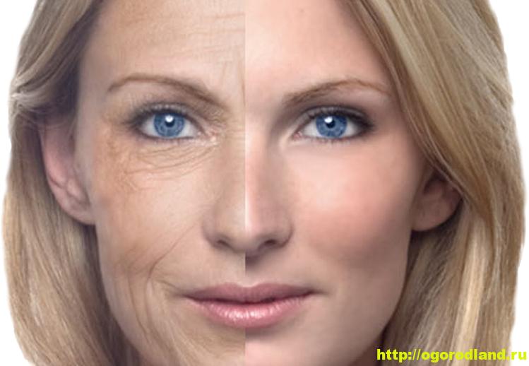 Натуральные домашние маски для лица для женщин старше 50