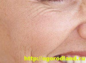 Витаминные маски для увядающей и морщинистой кожи лица 2