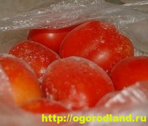 Как заморозить помидоры на зиму. 4 способа заморозки томатов