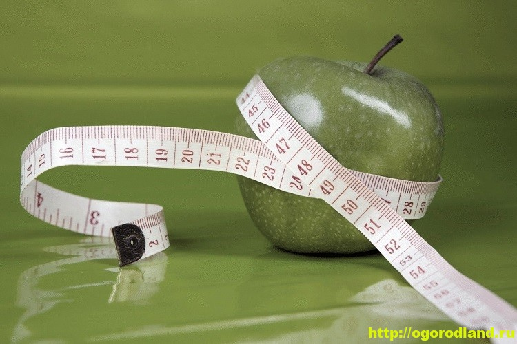Продукты для похудения. 10 продуктов с которыми легко худеть
