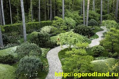 Лесной сад. Оформление участка в лесном стиле 3