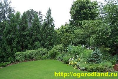 Лесной сад. Оформление участка в лесном стиле 11