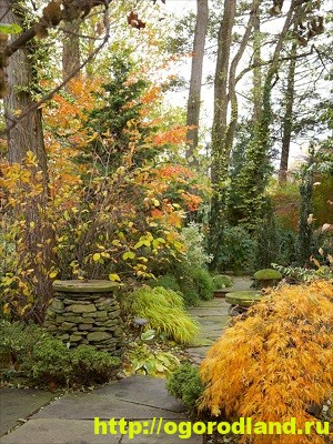 Лесной сад. Оформление участка в лесном стиле 12
