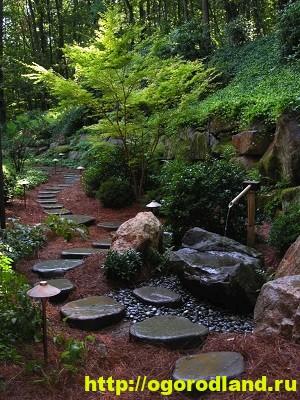 Лесной сад. Оформление участка в лесном стиле 4