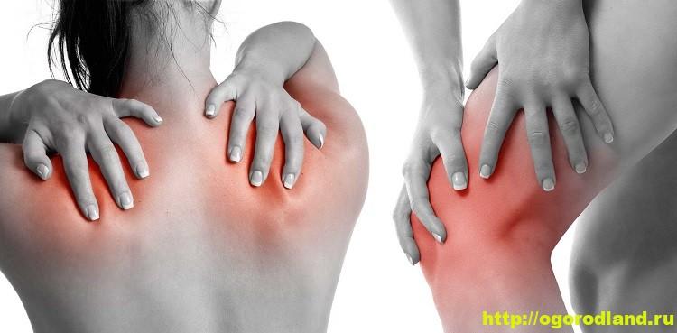 Лечение артрита. Топ-12 натуральных средств при артрите