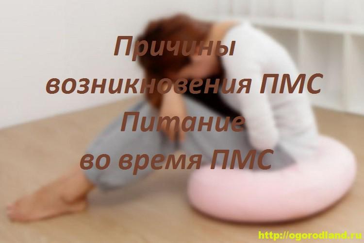 Причины возникновения ПМС. Питание во время ПМС 1