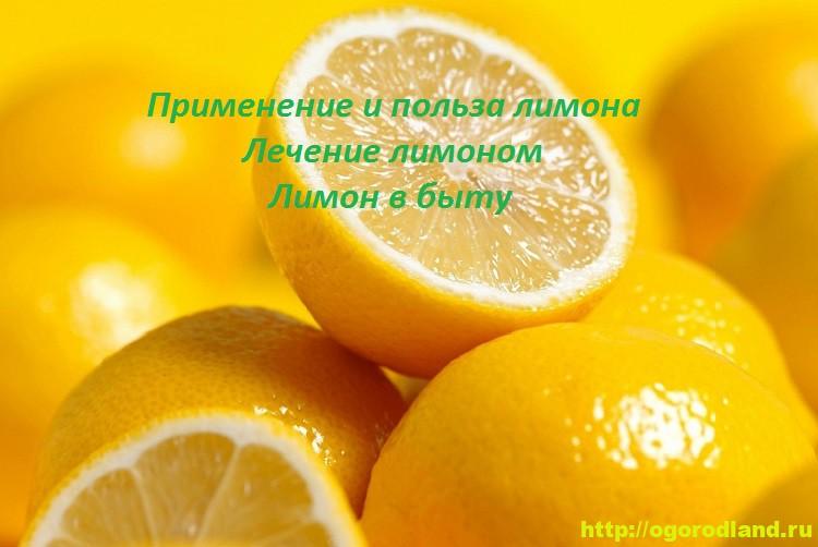 Применение и польза лимона. Лечение лимоном. Лимон в быту