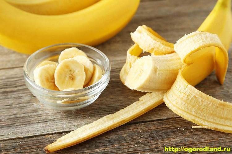 Банан. Мифы и легенды. Интересные факты. Польза и применение