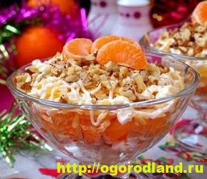 Салаты с мандаринами. Топ 6 рецептов оригинальных салатов 3