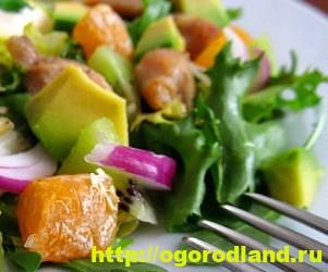 Салаты с мандаринами. Оригинальные рецепты 6