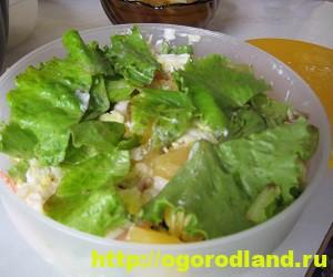 Салаты с ананасом. Рецепты вкусных и оригинальных салатов 5