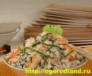 Салаты с мандаринами. Подборка рецептов вкусных салатов 7