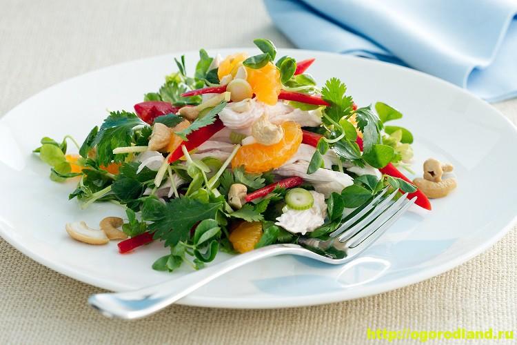 Салаты с мандаринами. Подборка рецептов вкусных салатов