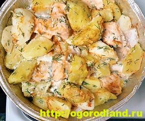 Как приготовить форель. Рецепты вкусных блюд из форели