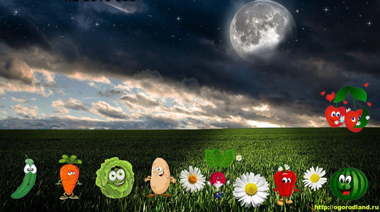 Лунный посевной календарь на 2021 год 3