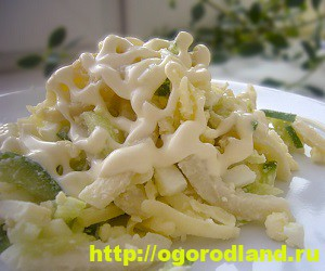 Салаты из морепродуктов. Вкусные рецепты приготовления 7