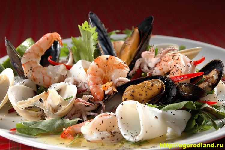 Салаты из морепродуктов. Вкусные рецепты приготовления