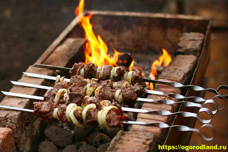 Как мариновать мясо на шашлык. Секреты вкусного шашлыка 1