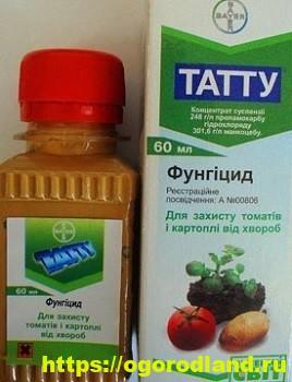 Фунгициды. 5 лучших препаратов для защиты растений 5