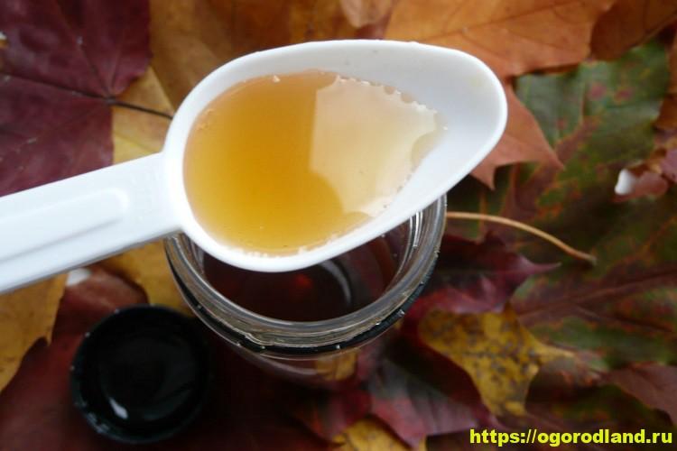 Приготовьте сироп от кашля и простуды 1