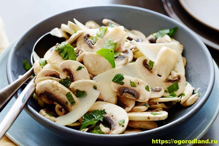 Легкий закусочный салат из шампиньонов 1