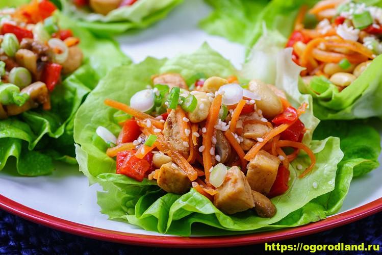 Тайский салат из обжаренной курицы и овощей 7