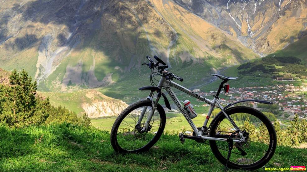 Велосипед как отличное времяпровождение на даче