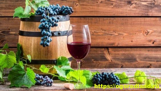 Готовим домашнее вино из винограда без дрожжей – лучшие рецепты