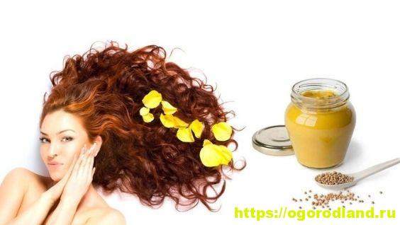 Маска для волос из горчичного порошка: лучшие маски для роста с горчицей