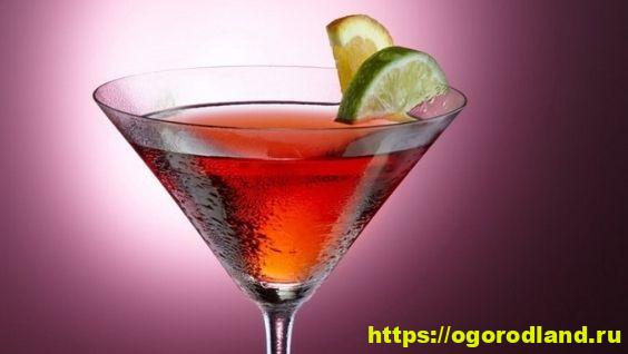 Самые вкусные алкогольные коктейли в домашн их условиях — рецепты с фото пошагово