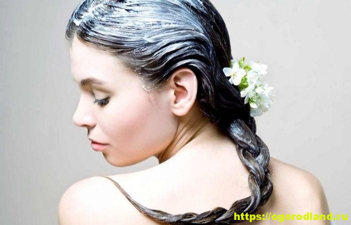 Как восстановить волосы после зимы, придать им блеск и здоровый вид? Топ восстанавливающих домашних масок для волос