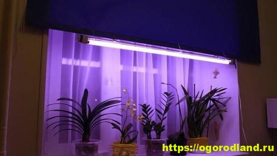 Лампа для цветов комнатных