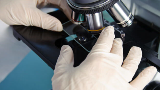 Микроскоп световой бинокулярный