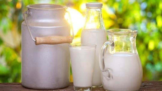 Какая польза от употребления молока?