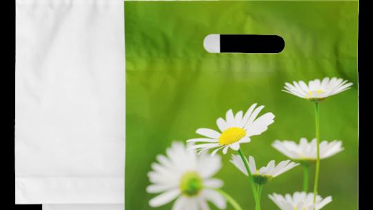 Как не ошибиться при заказе пакетов из полиэтилена: полезные советы
